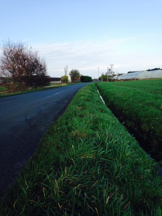 The Belgian farmland of coastal Lancashire ?!