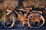 Rusty Bike (S8an)