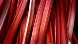 Rhubarb_in_Borough_Market