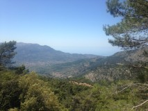 View of Soller from the car park at Puig Major