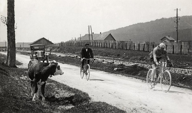 A cow watches the 1926 Tour de France go by (Image: Nationaal Archief via Flickr)