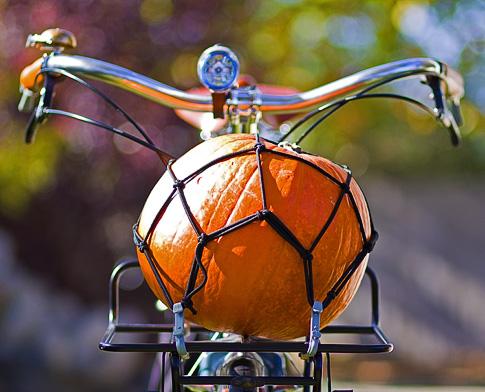 Pumpkin on a Bike (Image: ecovelo.info)
